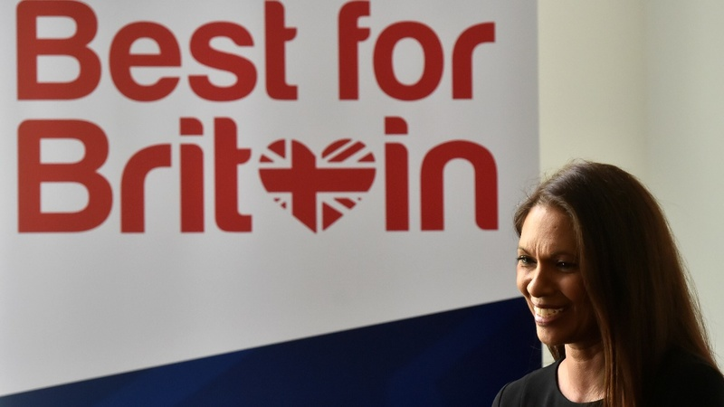 INSIGHT: Pro-EU campaigner launches tactical vote drive