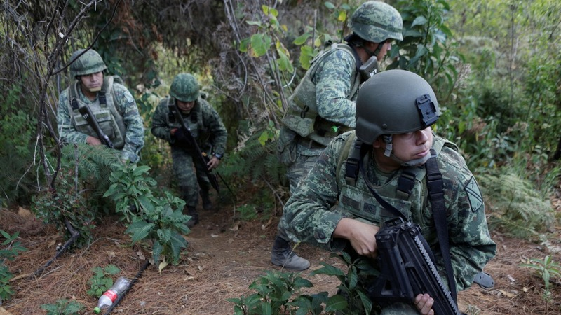Mexico's army fights to destroy opium production