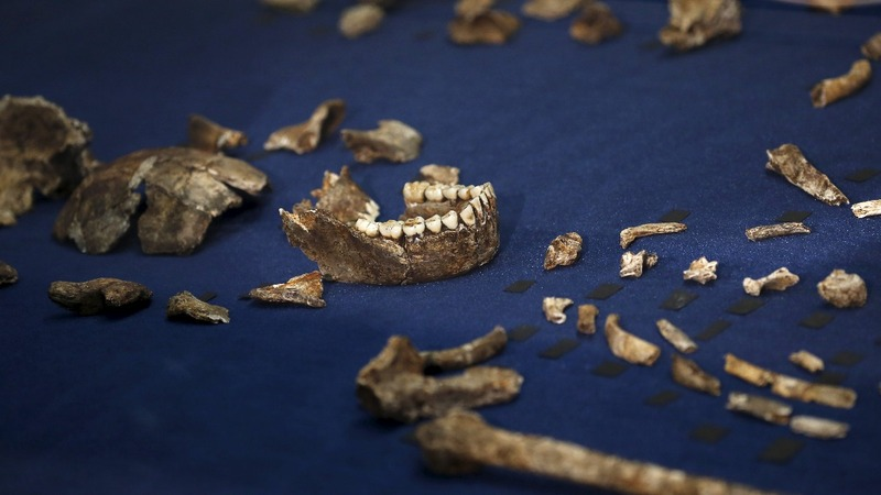 Early man coexisted with human-like species in Africa