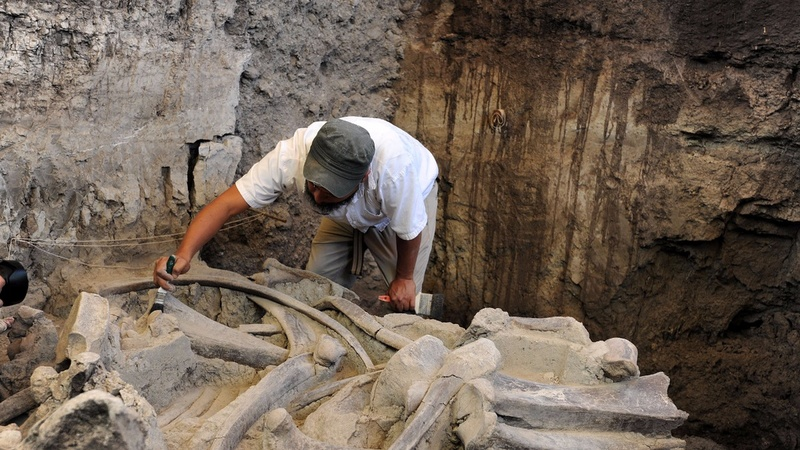 Russians carve a living from mammoth tusks