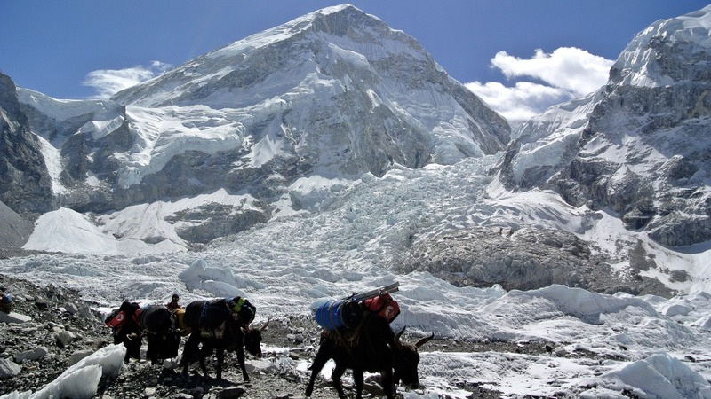 Sherpas find four dead climbers on Mt. Everest