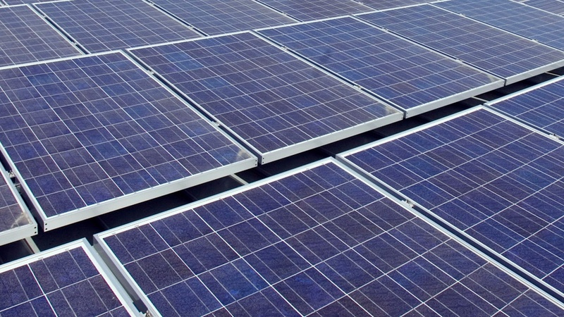Large U.S. companies warm up to renewable energy