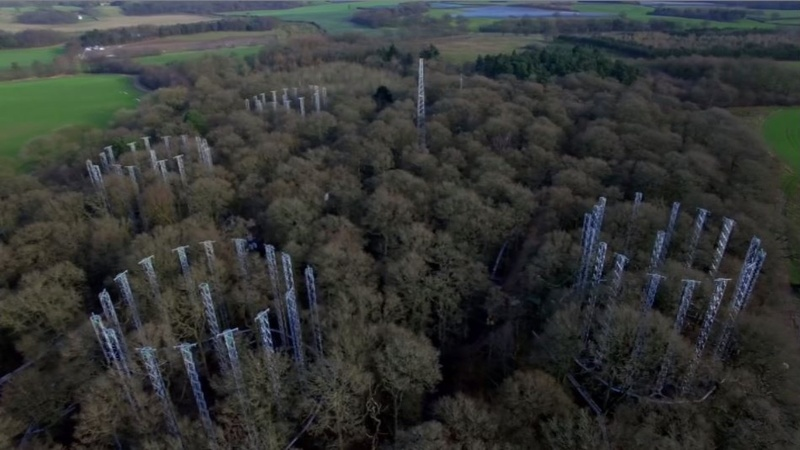 INSIGHT: 'Forest lab' shows impact of rising CO2