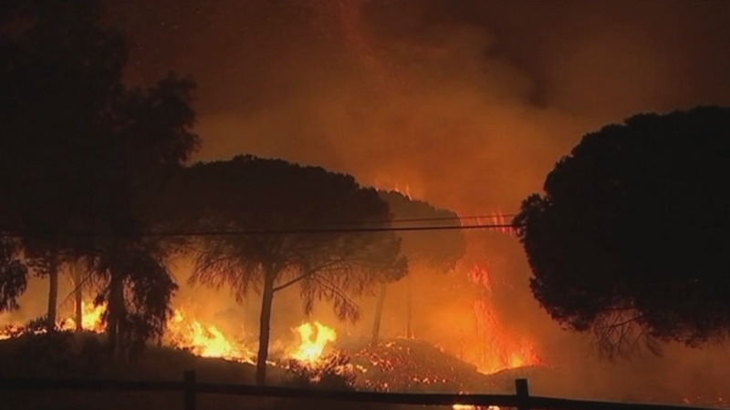 INSIGHT: Evacuations during Spain forest fires