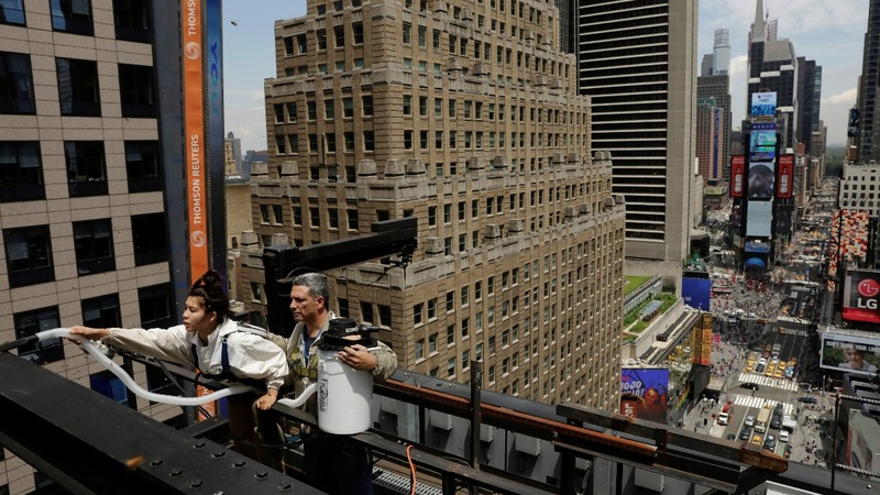 INSIGHT: Swarm of bees removed from Times Square ledge