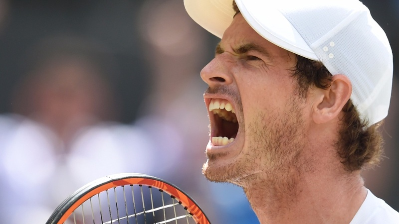 Murray beaten in Wimbledon quarter-finals