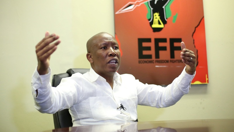 60 ANC MPs will turn on Zuma - Malema