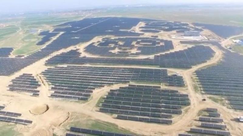 INSIGHT: A panda-shaped solar farm in China