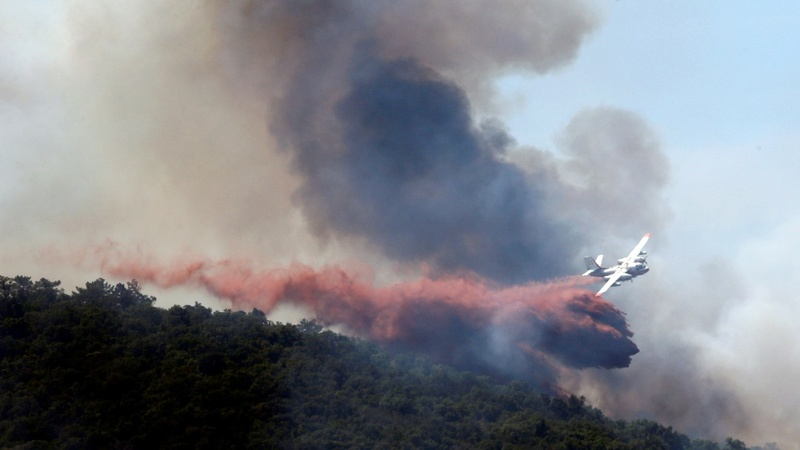 INSIGHT: Wildfires blaze through Europe
