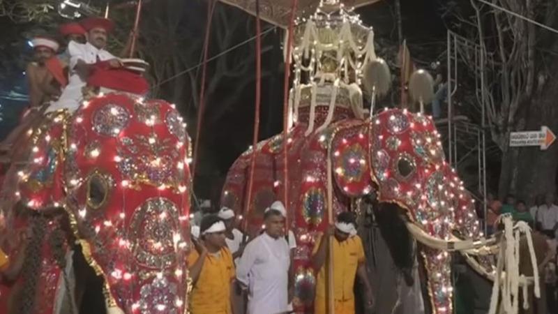 INSIGHT: Elephants parade in Sri Lanka festival