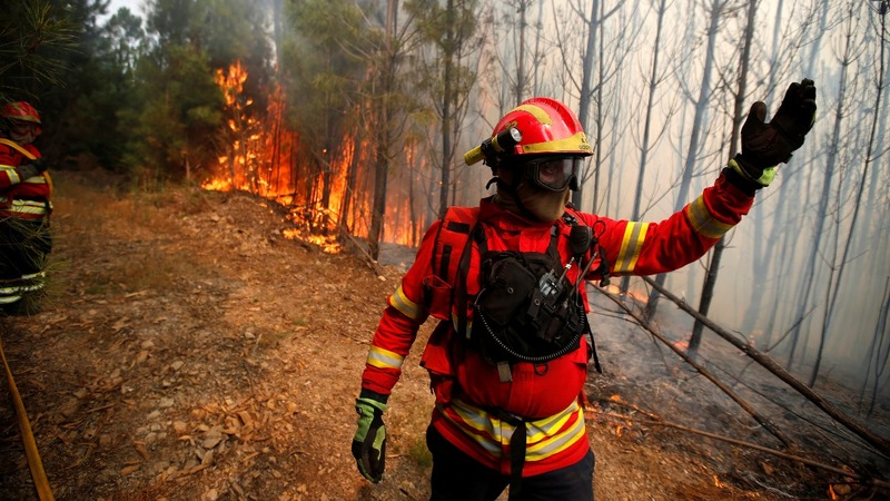 INSIGHT: Firefighters battle wildfires in Portugal