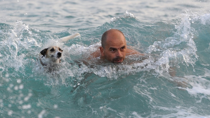 INSIGHT: Dogs and their owners race in Croatia