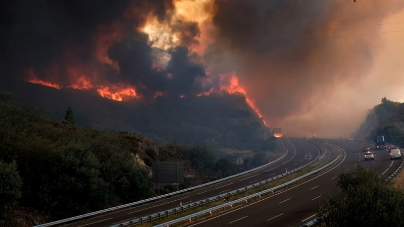 INSIGHT: Forest fire rages in northern Spain