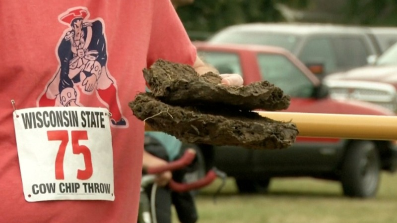 INSIGHT: Discs of cow dung fly at Wisconsin festival