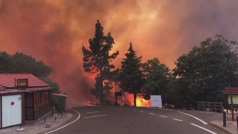 INSIGHT: Wildfire rages through Gran Canaria
