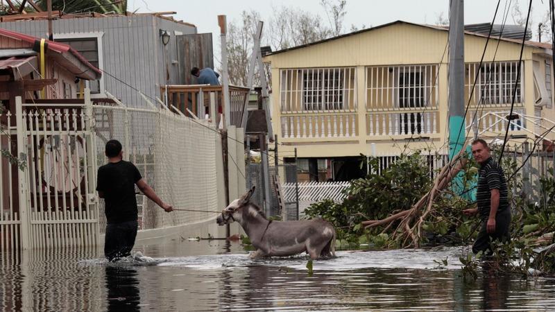 Failing dam creates new crisis in Puerto Rico