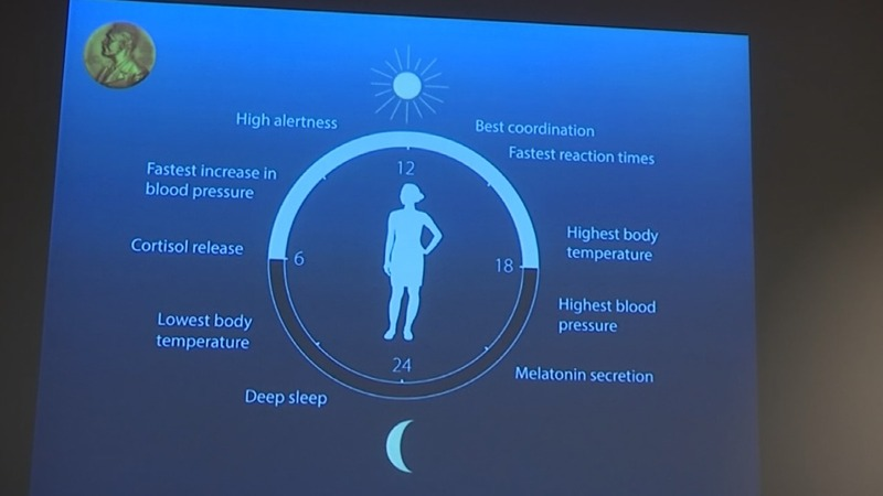 U.S. 'body clock' scientists win Nobel medicine prize