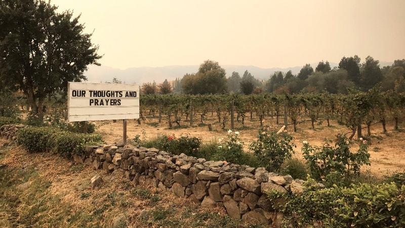 California wine country races to save grapes