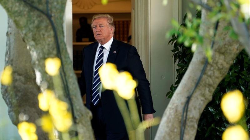 Trump pick for 'drug czar' declines the post