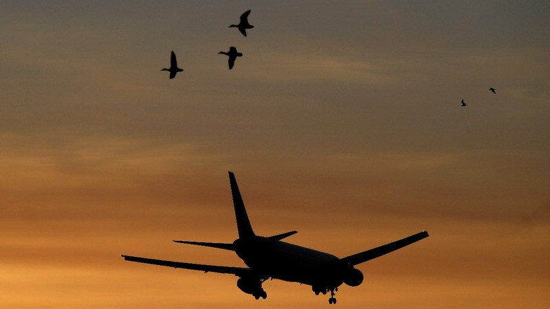 Sky's the limit for Irish aviation industry