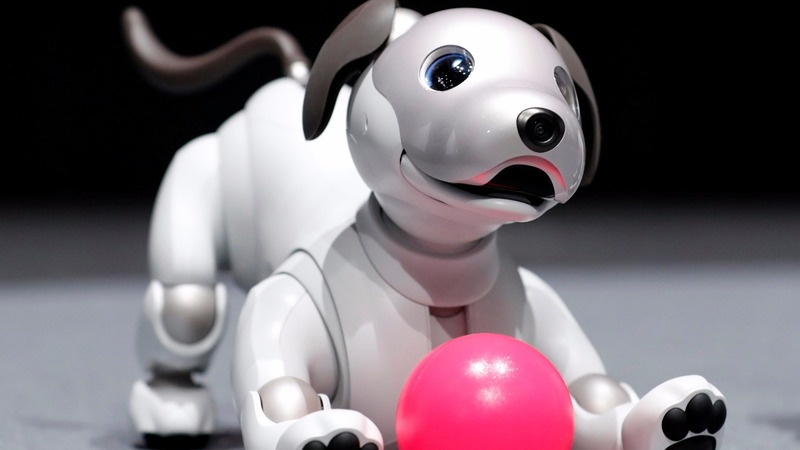 INSIGHT: Sony unveils new robot dog