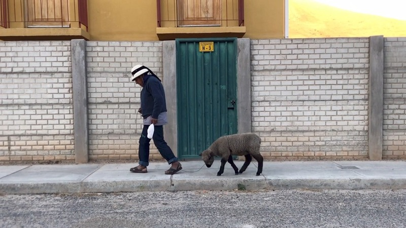 Andean villagers relocated by copper mine chafe at city living