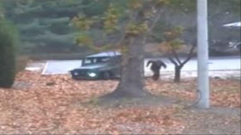 INSIGHT: Dramatic video of North Korea defector's getaway