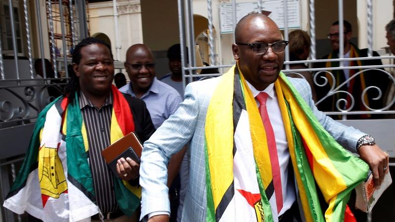 Leading Mugabe critic freed from jail