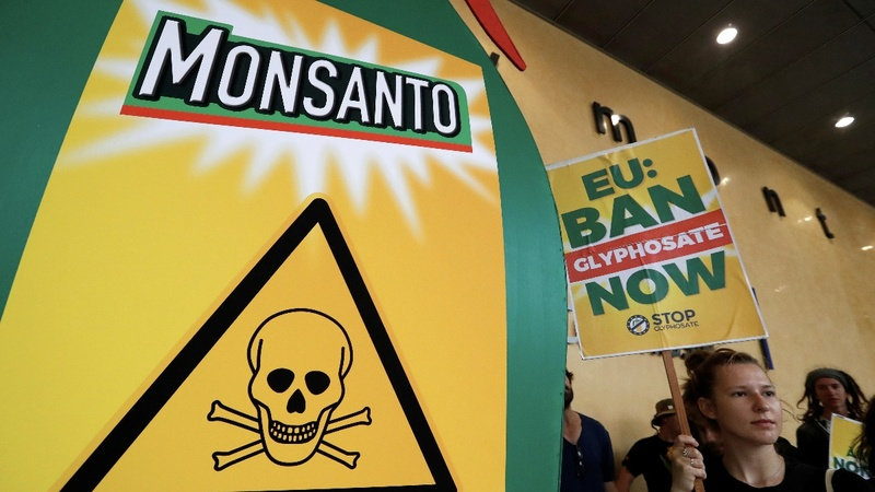 Monsanto offers cash to U.S. farmers who use its controversial herbicide
