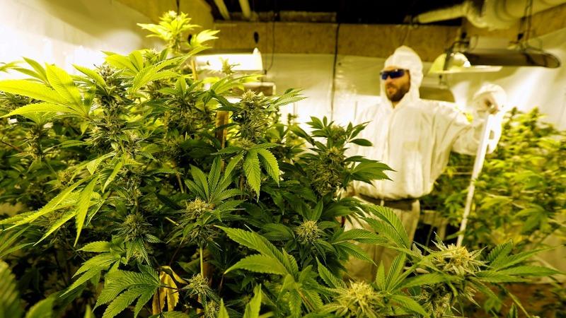 Sessions takes aim at legal marijuana as reach grows