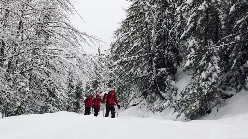 INSIGHT: Migrants risk dangerous journey across the Alps