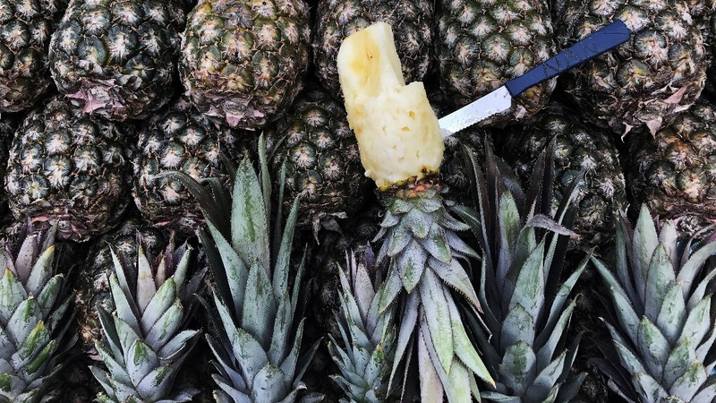 Police bust huge 'pineapple' cocaine ring in Lisbon