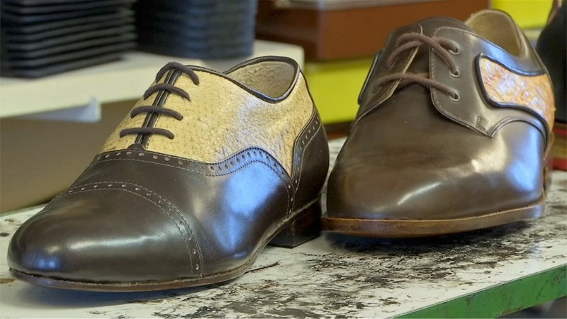 INSIGHT: Bavarian shoemakers create fashion from fish skin