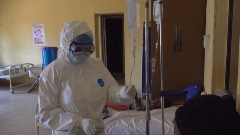 Deadly Lassa Fever grips Nigeria