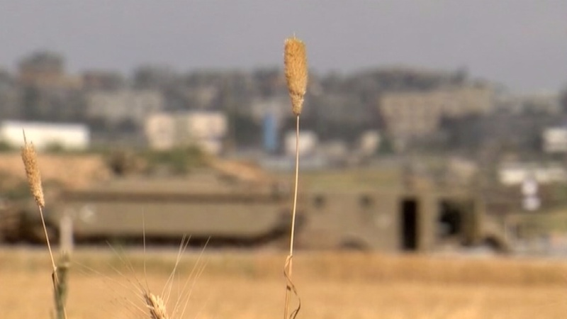 Gaza protests: the view from across the fence