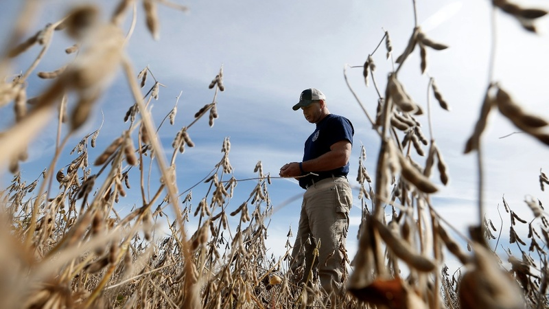 Farmers, GOP candidates express concern over trade tensions