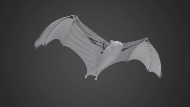 INSIGHT: Bionic flying fox shows off its abilities