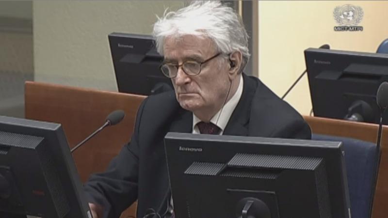 Karadzic seeks to overturn genocide sentence