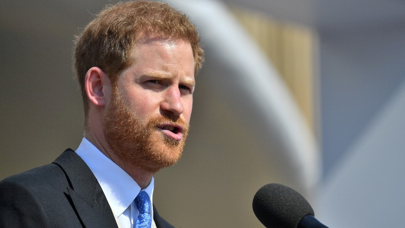 INSIGHT: Bee interrupts Prince Harry mid-speech