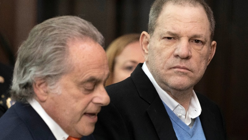 VERBATIM: 'Bad behavior is not on trial'