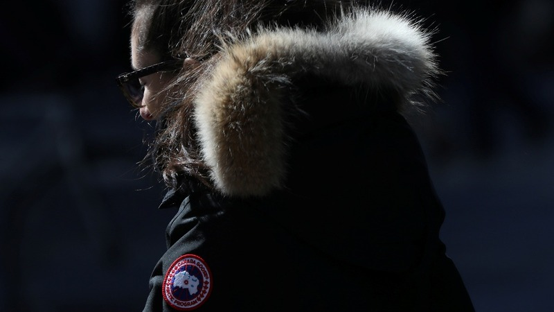 Canada Goose flies to stock market high