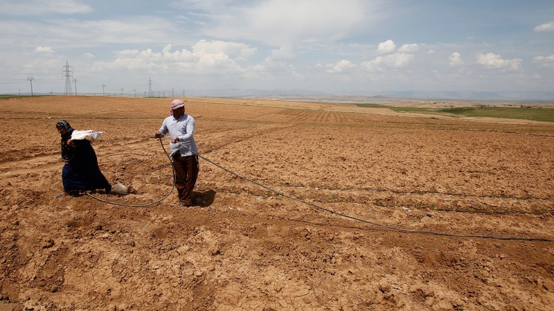 Inside Iraq's breadbasket, now a dust bowl