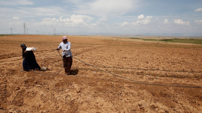 Inside Iraq's breadbasket, now a dust bowl