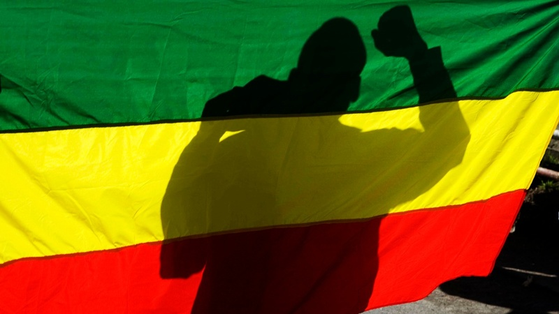 INSIGHT: The mood in Ethiopia under a new leader