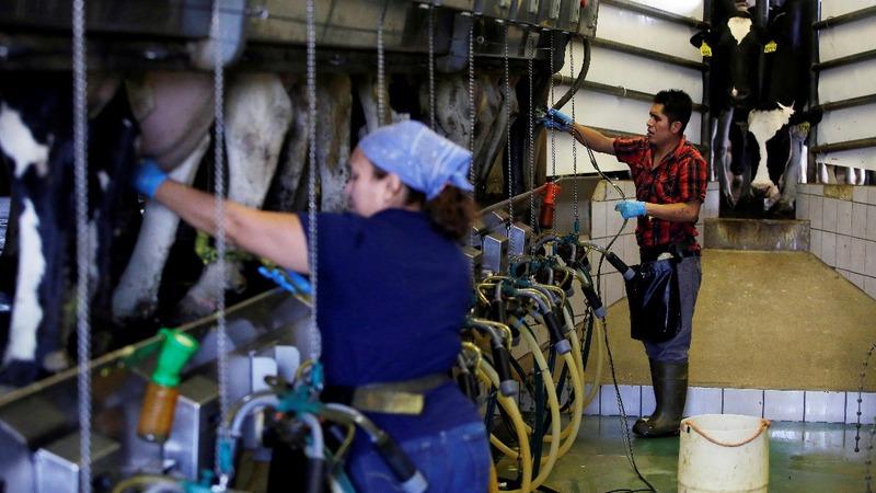 U.S. economy surges but skepticism abounds