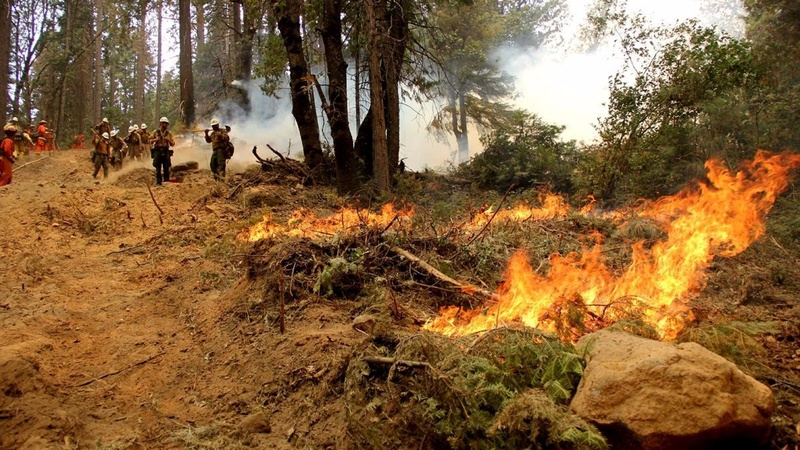 Man arrested in connection with CA wildfire