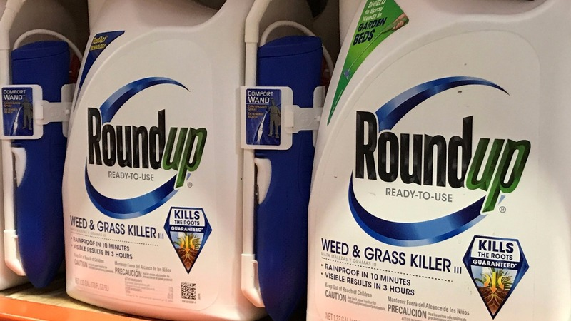 Bayer shares plunge on Monsanto cancer payout