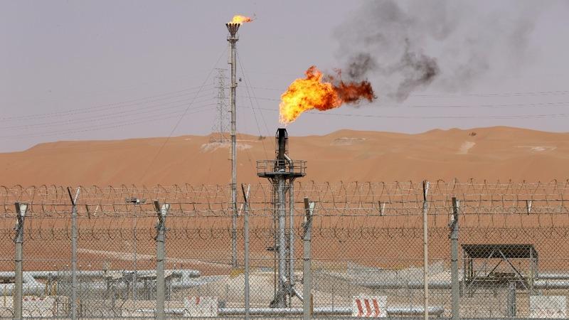 Saudi Arabia halts 'biggest IPO in history'