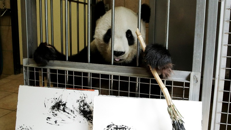Giant panda makes small fortune - from art