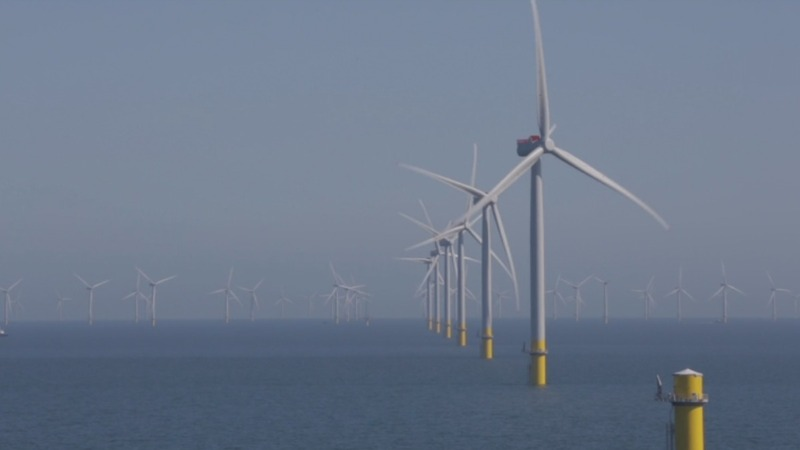 INSIGHT: World's largest offshore wind farm opens